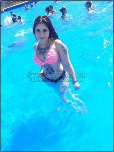 Nicol 15-5646-1329